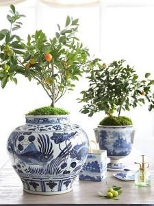 Chinoiserie Vases with orange trees